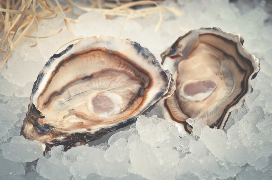 Shore-area Raw Bars Offer The Sea's Freshest Flavors
